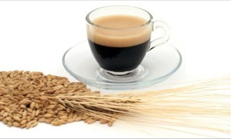قهوة الشعير (إنترنت)