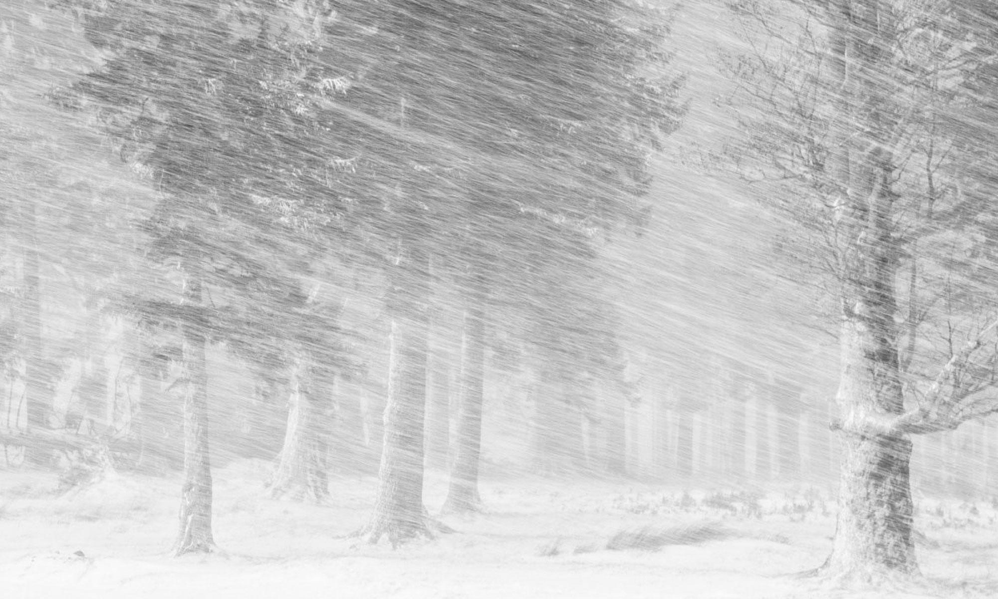 صورة التقطت من حديقة جبال سيوكاس الوطنية في رومانيا
