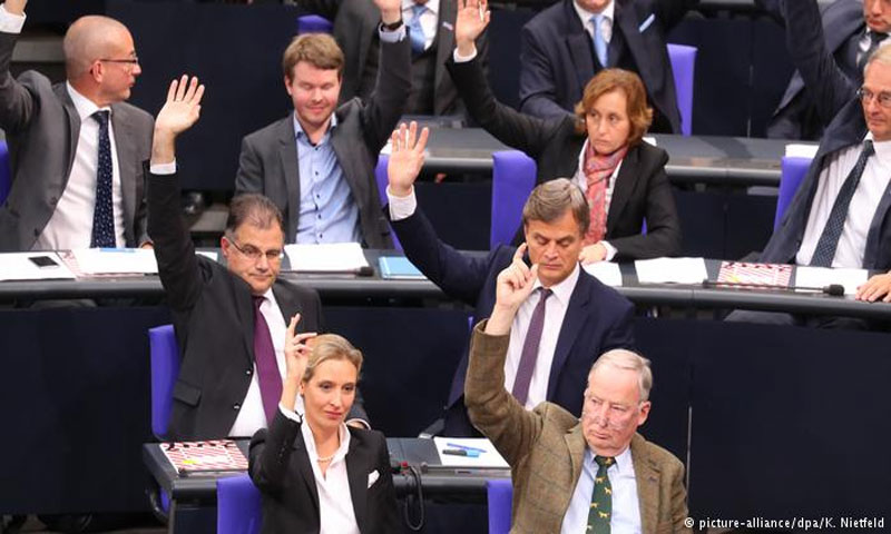 كتلة حزب البديل الألماني داخل البرلمان(DPA)