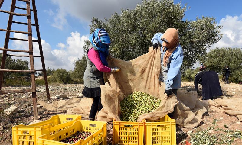 تعبيرية: نساء ريفيات (AFP)