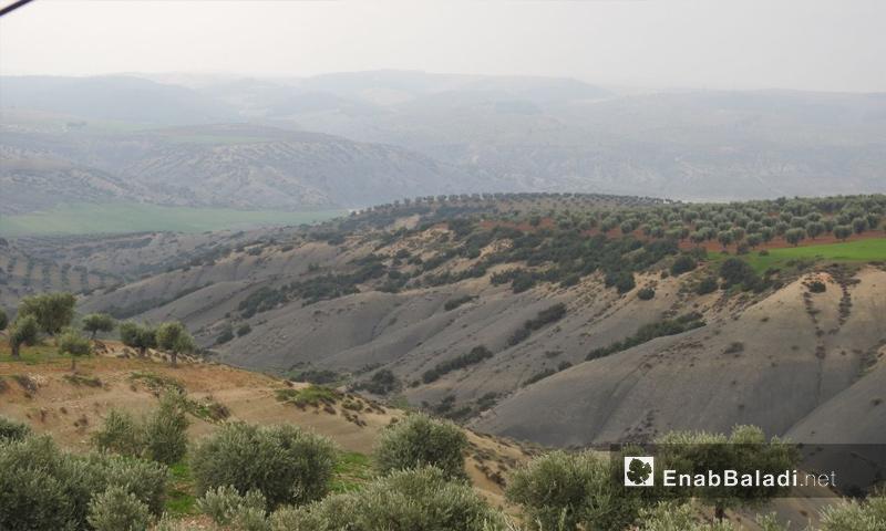 جبال في محيط مدينة عفرين - شباط 2018 (عنب بلدي)