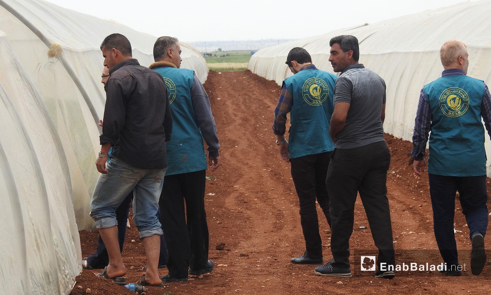 مشروع مؤسسة إكثار البذار في ريف حلب الشمالي - 18 أيار 2018 (عنب بلدي)