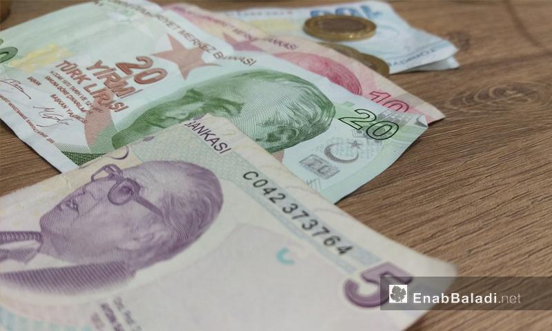 قطع ورقية من العملة التركية (عنب بلدي)