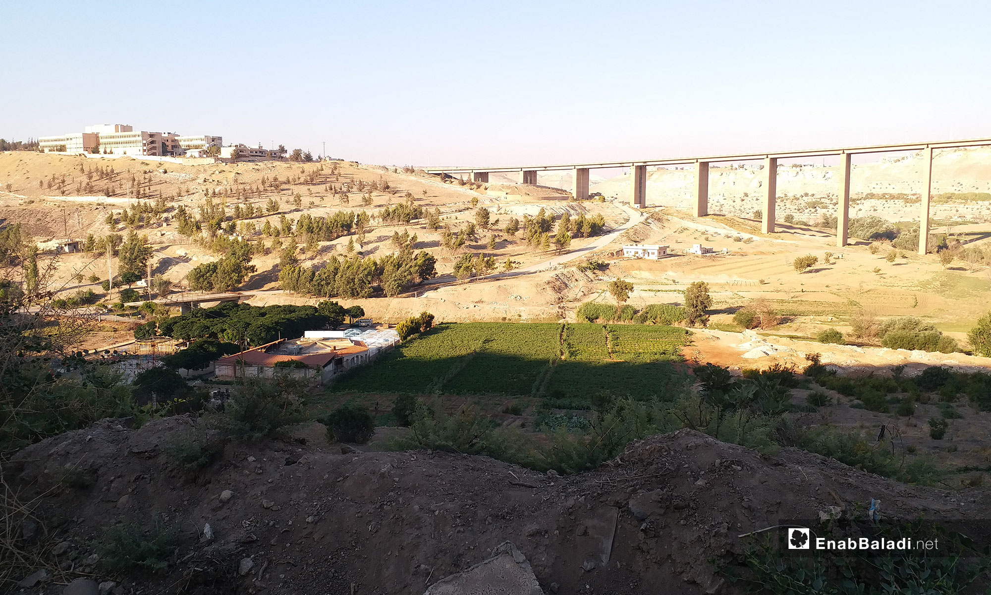 سد الرستن في مدينة حمص - 26 تموز 2018 (عنب بلدي)