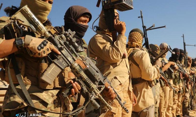 مقاتلو تنظيم الدولة الاسلامية في البادية (وكالة أعماق)