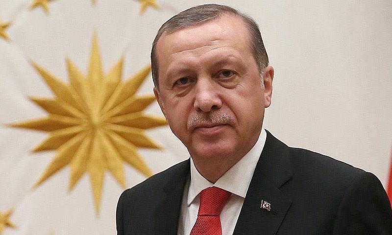 الرئيس التركي رجب طيب أردوغان )الأناضول)