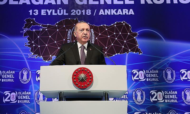 الرئيس التركي رجب طيب أردوغان (الاناصول)