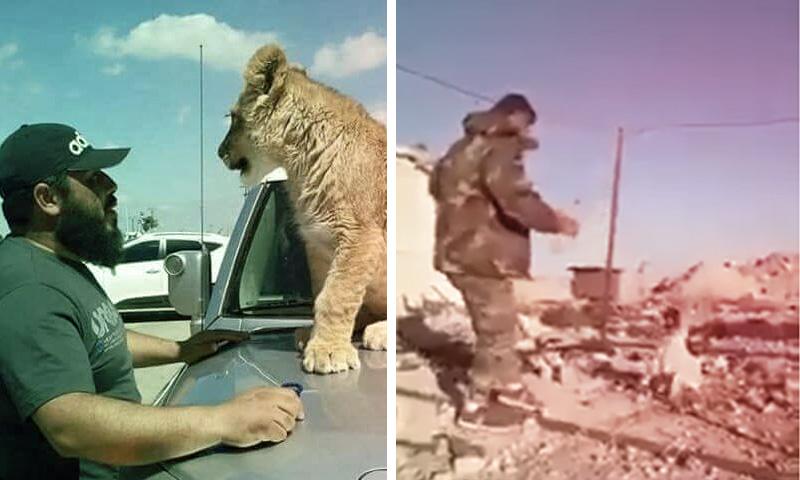 عناصر في قوات الأسد يعذبون حيوانات في سوريا (تعديل عنب بلدي)