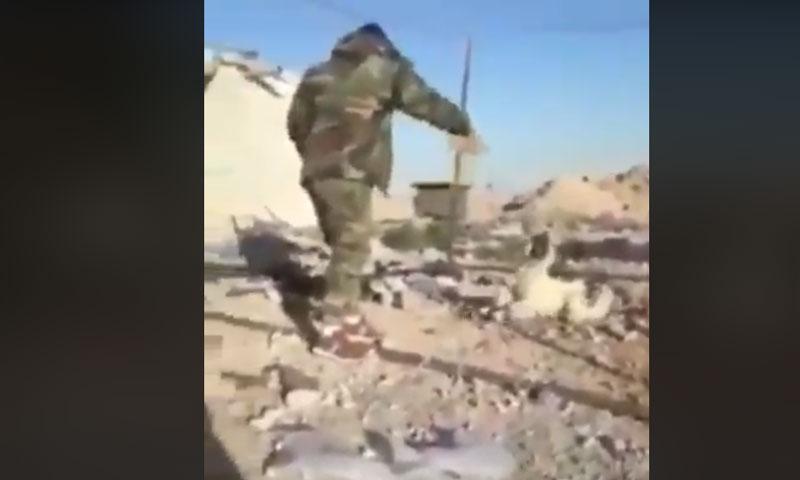 أحد عناصر قوات الأسد يحرق كلبًا(فيس بوك)