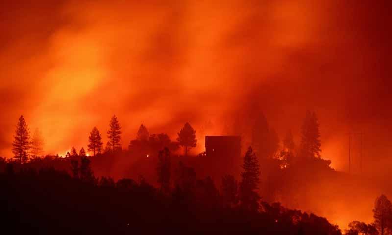الحرائق في ولاية كاليفورنيا الأمريكية 15تشرين الثاني 2018 (فرانس برس)