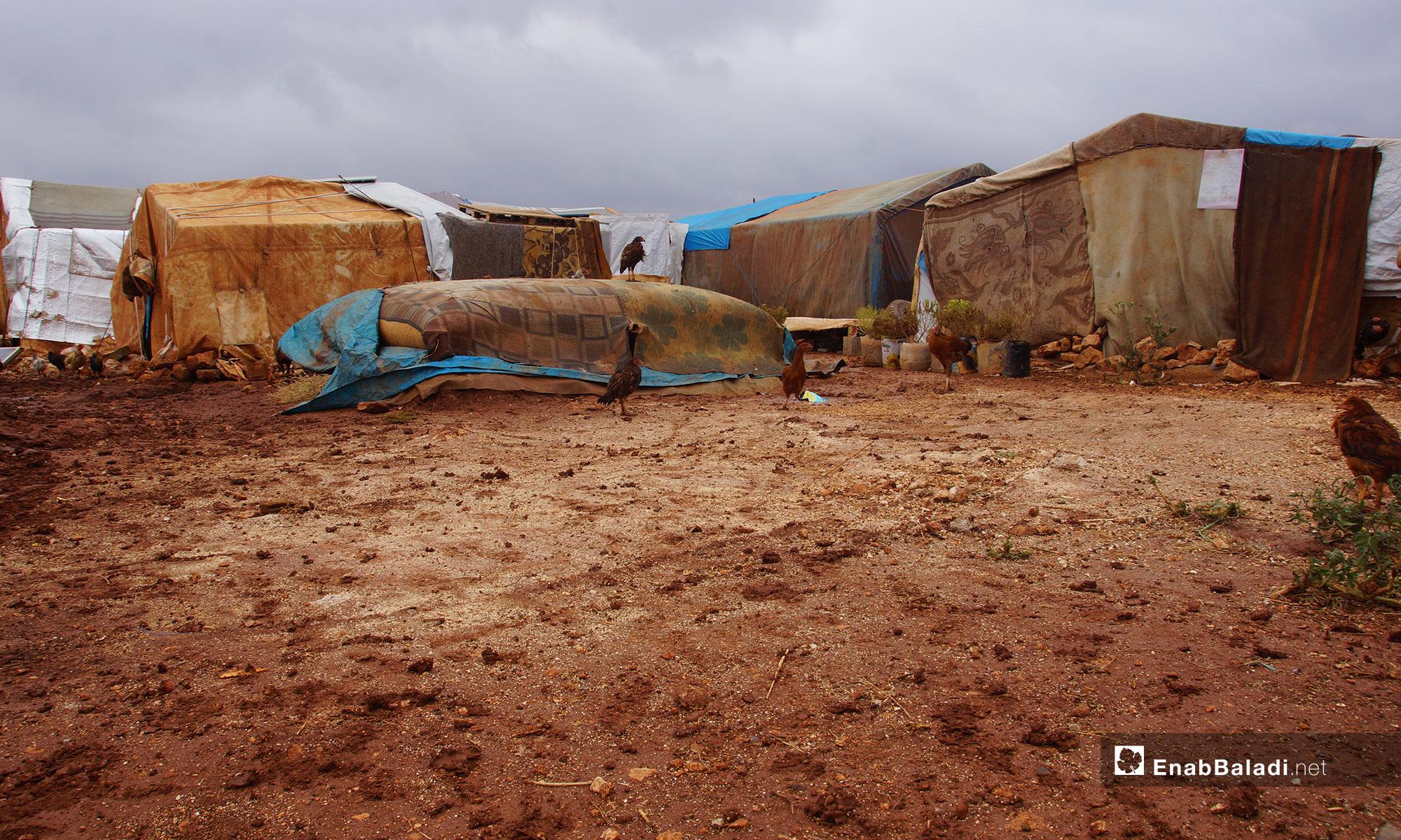 معاناة نازحو ريف حماة في مخيم أبو الوليد بريف إدلب الجنوبي - 5 من تشرين الثاني 2018 (عنب بلدي)