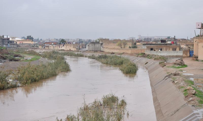 نهر جقجق الذي يمر داخل مدينة الحسكة شمالي شرق سوريا (هاوار)