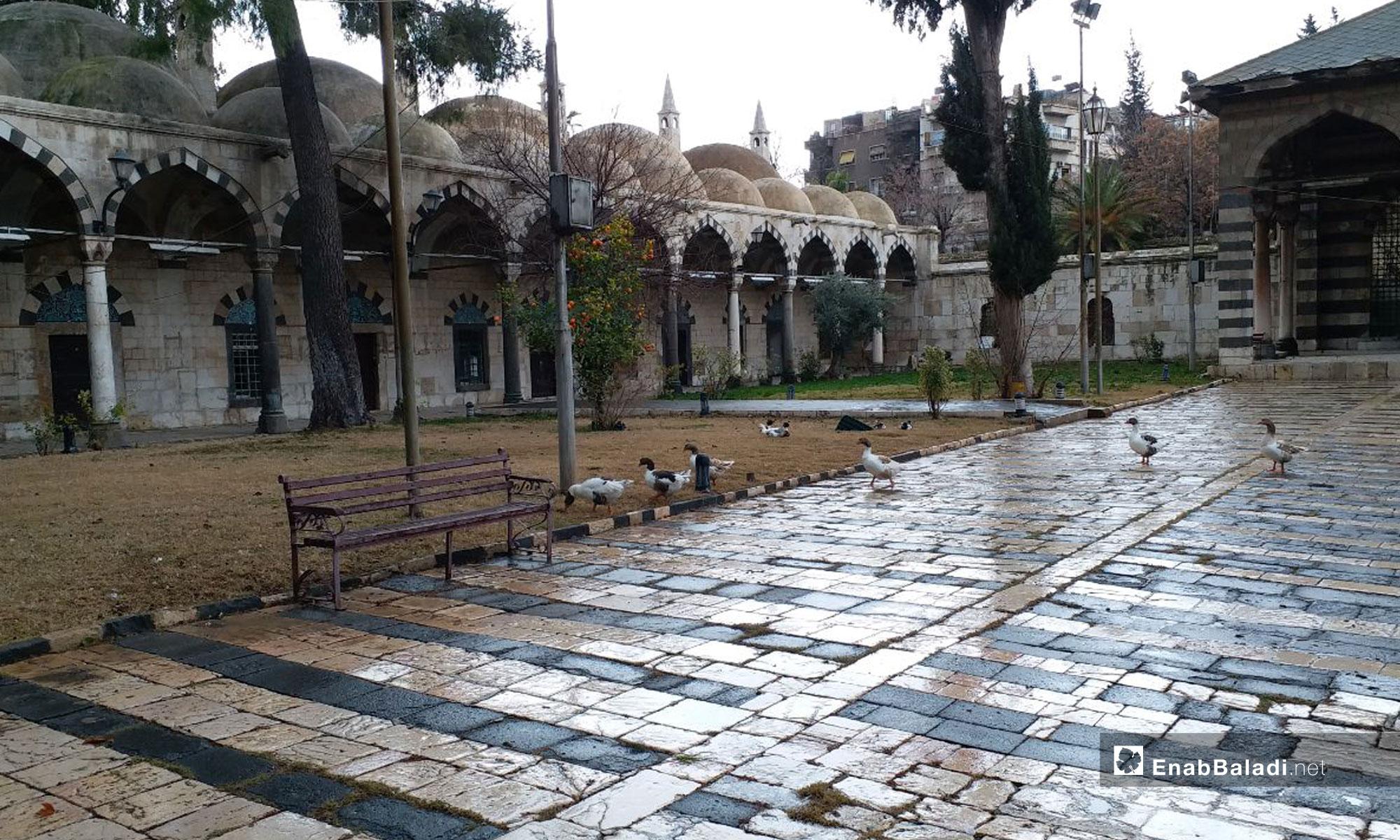 ساحة المتحف الوطني في دمشق - 14 من كانون الثاني 2019 (عنب بلدي)