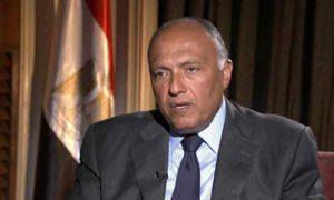 وزير الخارجية المصري، سامح شكري (المصراوي)