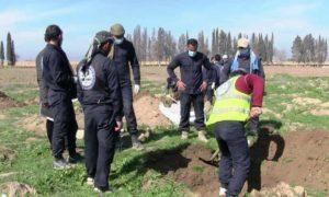 فريق الاستجابة الأولية التابع لمجلس الرقة المدني أثناء انتشال جثث من مقبرة جماعية على الضفة الجنوبية لنهر الفرات 28 آذار 2019 (وكالة هاوار)
