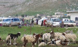 نزوح الأهالي من قرية الحويز إلى قرية شير المغاور تحت حماية القاعدة التركية في سهل الغاب - 18 من آذار 2019 (عنب بلدي)