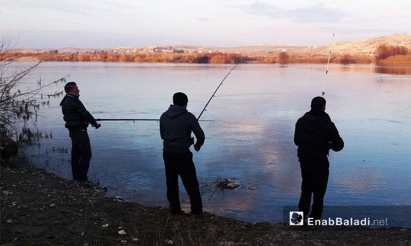 أشخاص يصطادون السمك من نهر الفرات - 2017 (عنب بلدي)
