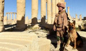 جنود من الجيش الروسي يقومون بدورية في مدينة تدمر السورية القديمة (AFP)