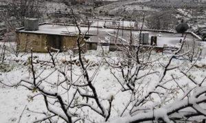 ثلوج في منطقة صلنفة بريف اللاذقية 19 نيسان 2019 (شام يبرق فيس بوك)