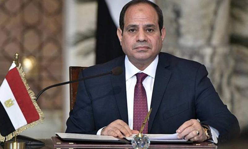 الرئيس المصري عبد الفتاح السيسي (الرئاسة المصرية)
