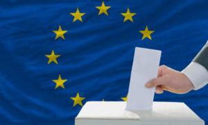 الانتخابات البرلمانية للاتحاد الأوروبي 2019 (وزارة الداخلية الألمانية)