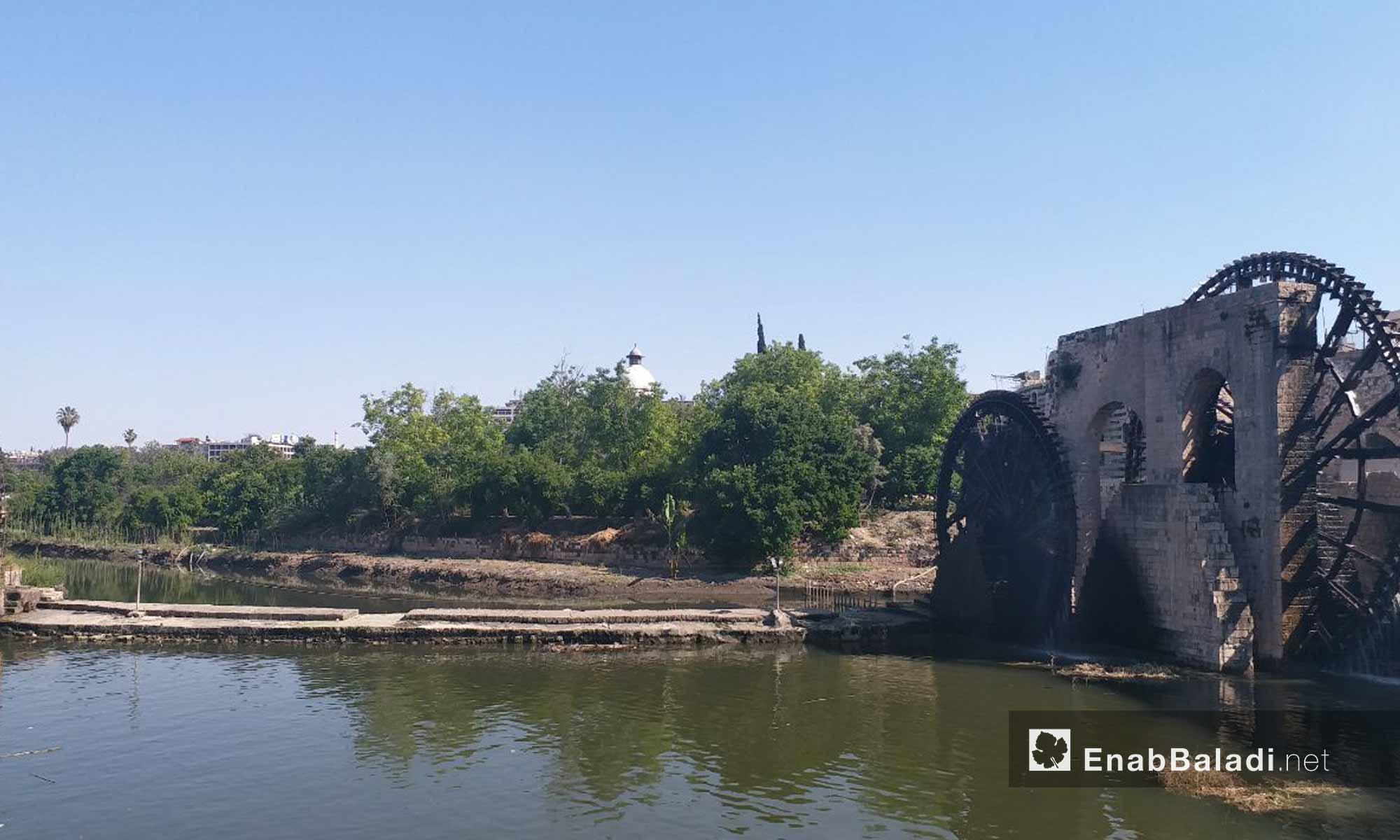 نواعير مدينة حماة على نهر العاصي - 18 من أيار 2019 (عنب بلدي)