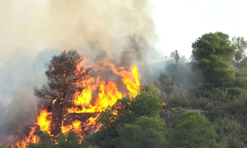 رجال الإطفاء يكافحون النيران المستعرة شمال إسبانيا نتيجة الحر- 28 حزيران 2019 (AFP)