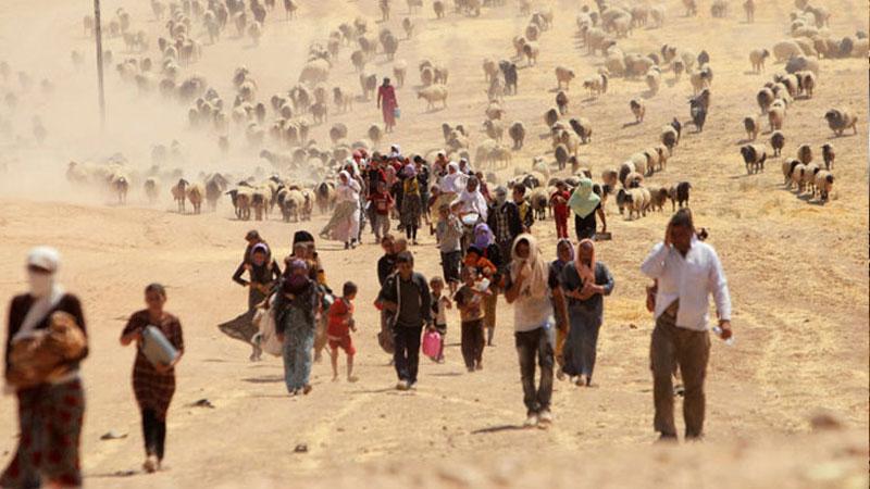 """عائلات أيزيدية في أثناء فرارها من تنظيم """"الدولة الإسلامية""""- (kurdstan24)"""