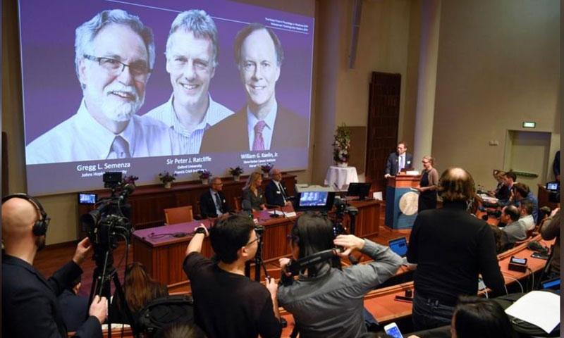 الإعلان عن الفائزين بجائزة نوبل للطب في السويد - 7 تشرين الأول 2019 (رويترز)
