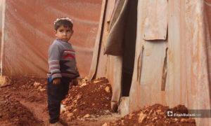 طفلة نازحة في مخيم التح بمعرة مصرين -29 تشرين الثاني 2019- (خاص عنب بلدي)