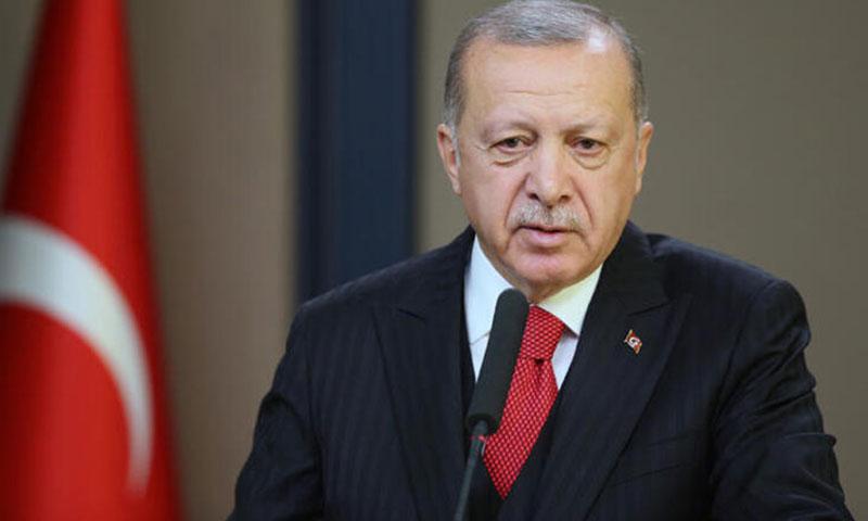 الرئيس التركي رجب طيب أردوغان في مؤتمر صحفي في أنقرة - 7 تشرين الثاني 2019 (الأناضول)