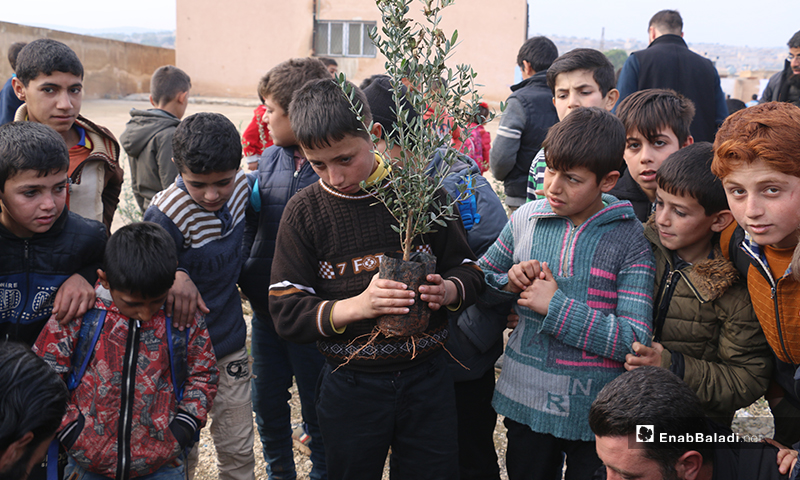 """أطفال يشاركون في حملة """"شجرة الحرية"""" لغرسات الزيتون في قرية كفر عروق بريف إدلب - 8 كانون الأول 2019 (عنب بلدي)"""
