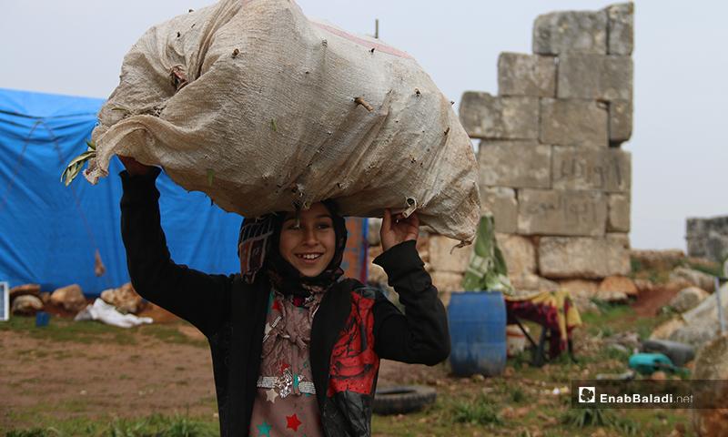 طفلة تحمل على رأسها كيس محملة بالحطب من أجل التدفئة قرب آثار دير عمان بريف حلب الغربي - 19 من كانون الثاني 2020 (عنب بلدي)