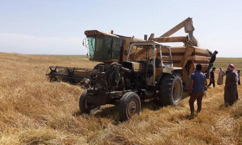 أرض زراعية في سوريا
