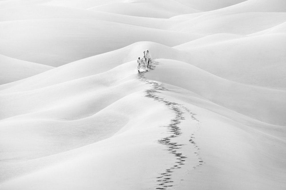 """الصورة بعنوان """"دروب الوحدة"""" تم تصويرها في 2018 بصحراء الربع الخالي في الإمارات- (بنكين أحمد)"""