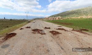 إزالة الألغام التي زرعتها قوات النظام قرية كفرعويد بعد استعادة السيطرة عليها من قبل فصائل المعارضة - 2آذار 2020 (عنب بلدي)
