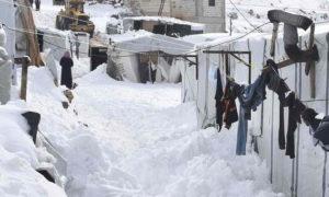 تراكم الثلوج في مخيمات عرسال اللبنانية - 10 كانون الثاني 2020 (الأناضول)