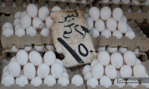 صورة لبسطة بيض في سوق مدينة إدلب- 7 من نيسان (عنب بلدي)