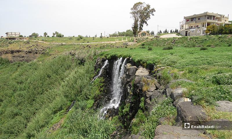 وتغذي مياه الينابيع العذبة القرية بمياه الشرب، كما يستفيد المزارعون من فائضها لري آراضيهم- 23 من نيسان (عنب بلدي)