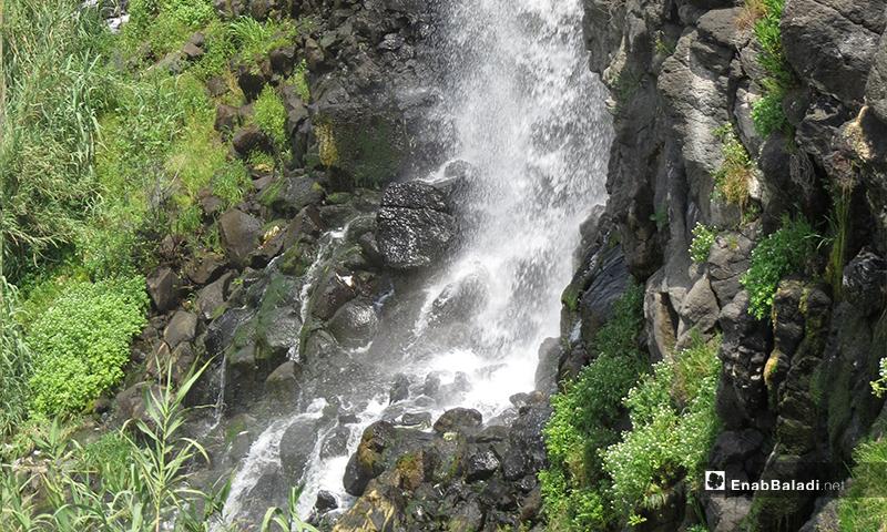 لكن بعد الحفر العشوائي للأبار واستعمال مياه البحيرات بشكل جائر جفت، ما يؤثر على انسياب المياه باتجاه الشلالات وفقدان المنطقة جماليتها فصل الصيف- 23 من نيسان (عنب بلدي)
