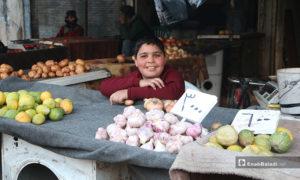 طفل يبيع الثوم في سوق مدينة إدلب- 7 من نيسان (عنب بلدي)