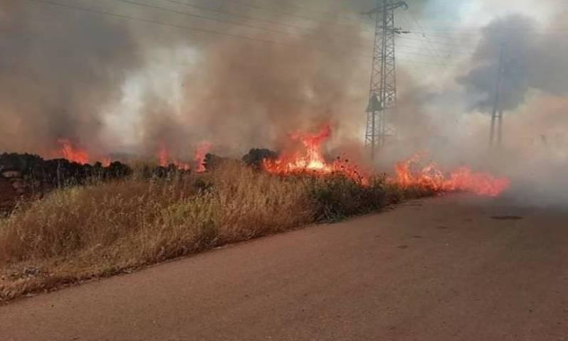 الحرائق التي اشتعلت في مساحات زراعية في منطقة السويداء جنوبي سوريا 8 من أيار 2020 - (الوطن أون لاين)