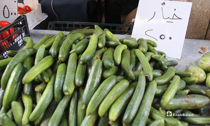 صورة توضح سعر كيلو الخيار في بلدة سرمين بريف إدلب الشرقي- 8 من أيار (عنب بلدي)