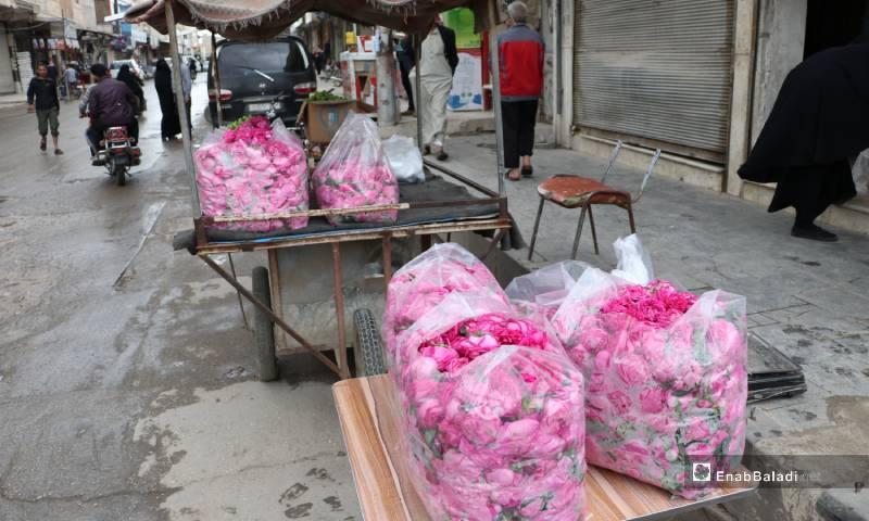 """""""الوردة الشامية"""" في أسواق مدينة الباب 4 من أيار 2020 (عنب بلدي)"""