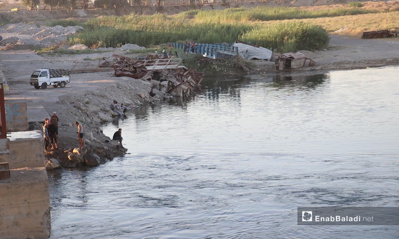 إحدى ضفاف نهر الفرات في محافظة الرقة - 24 تموز 2020 (عنب بلدي/عبد العزيز صالح)