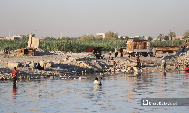 إحدى ضفاف نهر الفرات في محافظة الرقة - 24 تموز 2020 (عنب بلدي/عبد العزيزالصالح)
