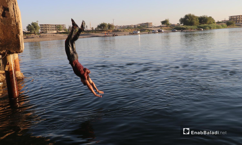 شاب يقفز للسباحة في نهر الفرات في محافظة الرقة - 24 تموز 2020 (عنب بلدي/عبد العزيز صالح)