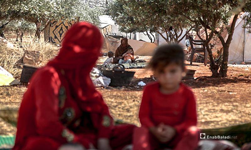 أطفال وعوائل يجلسون تحت شجر الزيتون من حر الصيف في مخيمات ريف إدلب- 7 من تموز 2020 (عنب بلدي/ يوسف غريبي)