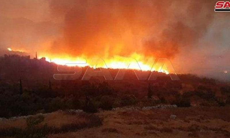 من حريق جبال عين الكروم 31 من آب 2020 (سانا)