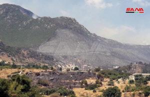 صورة تظهر دمار المساحات الخضراء في الأحراج الجبلية بعد حريق تل الكروم 2 من أيلول 2020 (سانا)